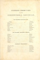Image of Standing Committees of the Constitutional Convention