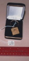 Image of NCI 50th Anniversary Key Chain
