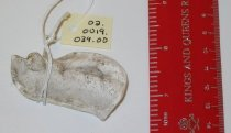 Image of 02.0019.039 - Mold, Dental-casting