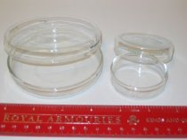 Image of 05.0016.039 - Corning Laboratory Products Pyrex Culture Dish