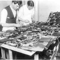 Image of Office of History Photograph Collection - Plague suppression, San Francisco ca. 1900s