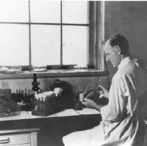 Image of Office of History Photograph Collection - Laboratory technician at work at the NIH Division of Biologics Standards