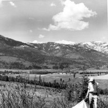 Image of Rocky Mountain Laboratory Photographs - Dragging for ticks