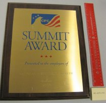 Image of Combined Federal Campaign Summit Award Plaque