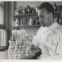 Image of Science Service - Dr. Sanford M. Rosenthal prepares streptococcus culture