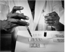 Image of National Institute of Arthritis and Musculoskeletal and Skin Diseases - NIAMD technician preparing slides
