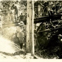 Image of Snapshot of a group of boy scouts crossing a bridge while on a hike.