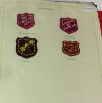 Image of A binder containing patches from various nations, territories, each division in the West and several camps. Also contains a copy of modern and historic soldiers' and officers' trim.  - 1980
