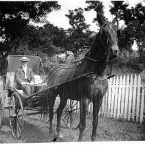 Image of Man in one-horse buggy