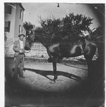 """Image of Man with his horse 1900 - 1920 - """"Jule Edwards"""" - Stumberg Family Collection"""