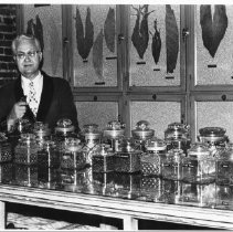Image of Man standing at counter of Dengler Tobacconist, 724 South Main, ca 1979 - Dengler Collection - Dengler Collection