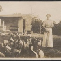 Image of Woman feeding chickens - circa 1916
