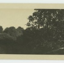 Image of Wooded area with automobile and water tower - ca 1926