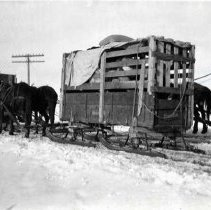 "Image of 1912 Joseph, Elk Imports 1 - ""Mar. 1912.  Elk (after re-loading) Joseph on way to Billy Mdws.  Up and away goes a crate of three elk being transferred to a sled for the remainder of the trip after the snow became too deep for wagons.  The crates were changed at McCarty Creek after coming by wagon from the David Michellod sheep ranch earlier in the day."""