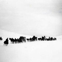 "Image of 1912 Oregon, Elk Imports 2 - ""March 1912 - Deepening snow on way to Billy Mdws.""  A wagon train carrying crates of Elk find it hard going as the snow gets deeper."