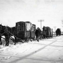 "Image of 1912 Oregon, Elk Imports 3 - ""March 1912 - Elk on way from Jackson Hole, Wyo. to St. Anthony, Ida. (and Billy Meadows).  Makeshift sleds, or 'Go-Devils' were used for the last eight miles of the trip to Billy Meadows.  Crates had been built on wagon beds so were hoisted as a unit and transferred from wagons to the sleds when the going became too rough for a wheeled vehicle."""