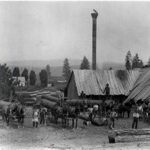 "Image of 1900+/- Oregon, Saw Mill 2 - ""Galloway Bros. Mill in Galloway Meadows, 7 mi. north of Elgin.  Logging.  Till Galloway Mill at Double Barrel Springs on Gordon Creek."""