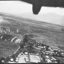 "Image of Aerial, Agricultural Features 1 - ""Strange acgricultural features in West Dutch New Guinea