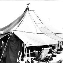 """Image of Biak Camp, Men's Tent 1 - """"Typical enlisted men's tent on Biak, Dutch New Guinea 17th Tact. Recon Sqdn""""  From """"Darkroom Soldier"""":  """"Mokmer Village Home.  Hill described his personal quarters on Biak as the most primitive of any of his ten sites.  Here he records....a canvas tent for a house.""""  (""""Darkroom Soldier"""" caption authored by George Venn)"""