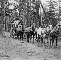 """Image of Burns, Stagecoach - """"No. 1547""""  """"Burns Stage - 4 (6) horse team"""""""
