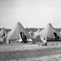 "Image of 41st Division, Camp Murray 1 - ""41st Division - After Sept. 16, 1940 - 1st Squad tents - no floors"""