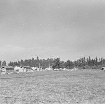 "Image of 41st Division, Camp Murray 3 - ""41st Division - Oct. 1940 - 1st Squad tents - no floors - Long row of latrine buildings for all 15 units of the 186 Inf."""