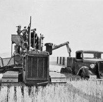 """Image of Alicel, Farming 5 - """"1940"""""""