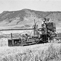 "Image of Alicel, Farming 6 - ""65 bu (bushels) per acre - white wheat - 1942"""