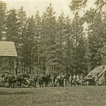 "Image of Eden, Threshing Operation - ""Threshing machine in Garden of Eden [Wallowa County] - circa 1914-1915"""