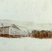 "Image of GRV, Harvesting - ""Harvesting in Grande Ronde Valley - circa early 1900's""  Written on back of photograph:  ""16 foot header and header wagon - agriculture grain harvest"""