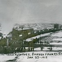 """Image of Elgin, Potatoe Train - """"Entire train [of] potatoes (21 cars) shipped from Elgin, Oregon [to Kansas City] - Jan 25, 1912""""  [For additional information and another view, see 2010.2.677 and """"History of Elgin, Oregon"""" by Bernal Hug (page 206).]"""