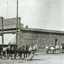 "Image of Enterprise, Street Scene 1 - ""A freight train pulled by teams of horses and mules makes its way through downtown Enterprise, Oregon.  Two saddle horses and two buggies are tied up at a hitching post in the right side, background."""