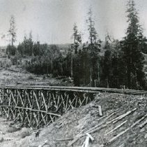 "Image of Train Tracks, Trestle - ""East Oregon Lumber Company Trestle in the Sled Springs area, Wallowa County - circa 1912."""