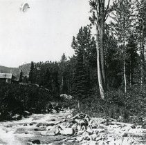 "Image of Cornucopia Home, Panther - ""July 4, 1915 - Lawrence Panther's place on Pine Creek, Cornucopia, Ore."""