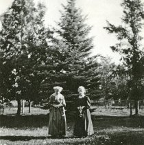 """Image of Union Home Yard, Gales - """"Standing in front of an evergreen tree in the yard of Mrs. Gales' home are her mother and Miss Bell."""""""
