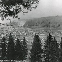 "Image of Wallowa, Hilltop View - ""No. 4 Birdseye view of Wallowa, Ore. from Green Hill looking north - circa 1912.""  The two public schools are visible in the right side of the picture, just above the tree line.  The large building on the left was the Wallowa High School and the light colored, slightly smaller building on the right was the Wallowa Public Grade School."
