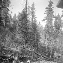 "Image of Cove, Women on Rocks - ""Cove, Oregon area - circa 1912.  Three unidentified women by a boulder-strewn stream bed."""