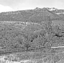 "Image of Cove, Mt. Fanny - ""Cove, Oregon area - circa 1914.  A horse pasture with Mt. Fanny in the background."