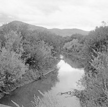 Image of Cove, Stream 2 - Cove, Oregon area - circa 1912.  A stream or irrigation canal lined on both sides with trees and brush.
