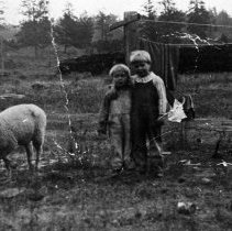 Image of 1910+/- Children - Two young children pose together outdoors near a clothesline and a grazing sheep.