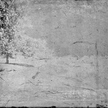 Image of 2012.6.1657 - Negative, Glass-plate