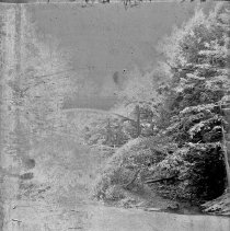 Image of 2012.6.1728 - Negative, Glass-plate