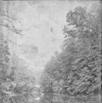 Image of 2012.6.1736 - Negative, Glass-plate