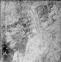 Image of 2012.6.1774 - Negative, Glass-plate