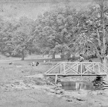 Image of 2012.6.743 - Negative, Glass-plate