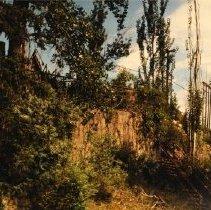 Image of 1992.56.7 - Williams, Steve