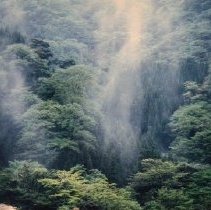 Image of 1992.60.30 - Nagano, Ryoichi
