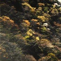 Image of Untitled - Nagano, Ryoichi