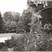 Image of 1980.17.1 - Print, Photographic