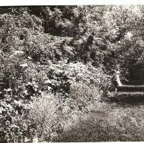 Image of 2003.44 - Print, Photographic